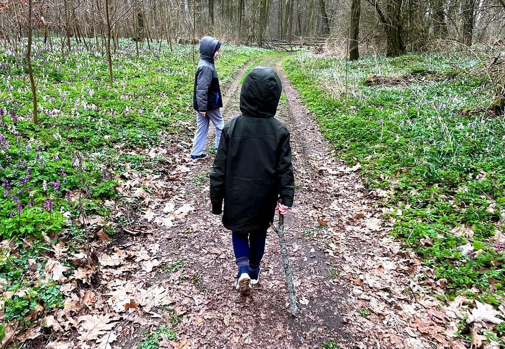 procházka, děti, dobříňský háj