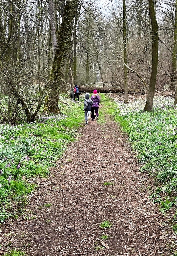 Dobříňský háj, Procházka v dešti lesem není nuda, děti běží lesem