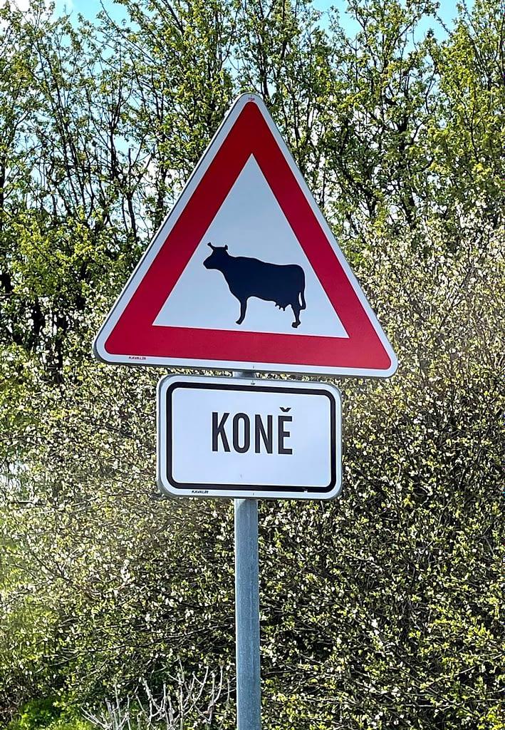 dopravní značka pozor krávy a pod ní cedulka koně